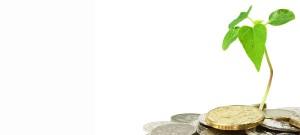 Green start-ups lack funding