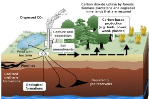 Schematic showing CCS process