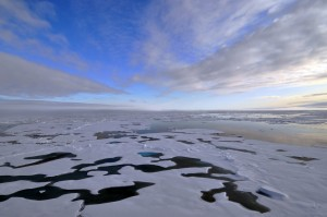 Expanding Arctic water pool could cool Europe