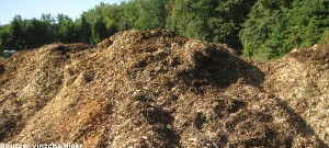 Food waste could provide London with new gas supply
