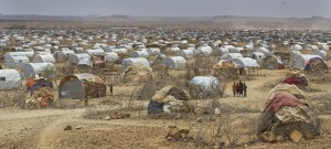 New Horn of Africa drought warning