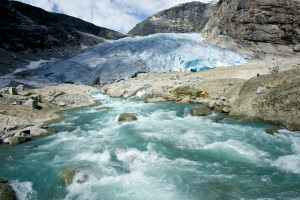 Climate change could lead to loss of biodiversity in glacier-fed rivers