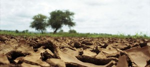 We must correct image of desertification and promote practical solutions