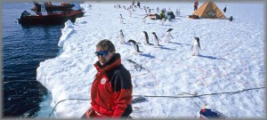 Photo of the week #14 – Penguins under threat from melting ice