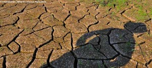 UK Drought - What will it mean?