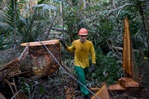 Rio+20 Business Focus: Ditching diesel in Brazil's Amazon Rainforest