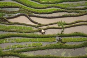 Rio+20 Business Focus: Combating drought in south-west China