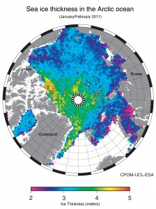 Arctic could be ice-free in summer by end of the decade, according to European Space Agency