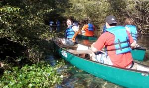 IDEAS UF hosting Canoe Clean-ups in Rattlesnake Creek