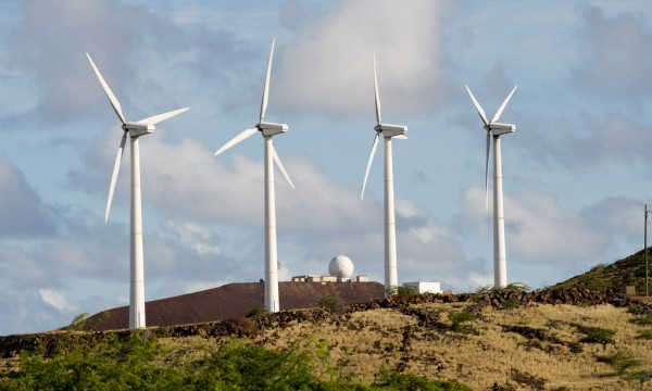 VIDEO: Expert explains why renewables sector needs policy certainty