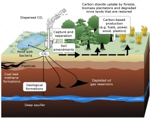 Carbon capture and storage: time to bury the myth?