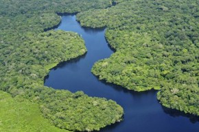 Climate impacts on Amazon expected to be complex