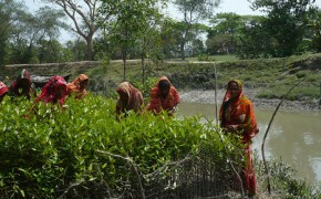 Bangladesh pushes adaptation strategy as climate fears grow