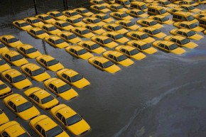 Time to adapt to climate change, say world's biggest cities