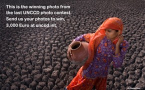Enter the UN's desertification photo contest!