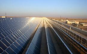 Saudi Arabia 'committed' to green revolution