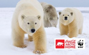 Coca-Cola sets 25% carbon reduction target