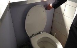 Algae-powered toilet flush could power 200,000 cars by 2016
