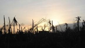 Rich nations could face climate compensation legal challenge