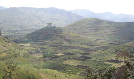 Rwanda is one of the most densely populated countries in Africa, and one of the poorest in the world (Pic: notphilatall/flickr)