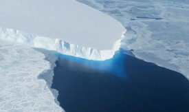 West Antarctic glaciers have 'passed point of no return'