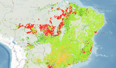 The WRI's mapping tool shows areas where forest has recently been cleared (red)