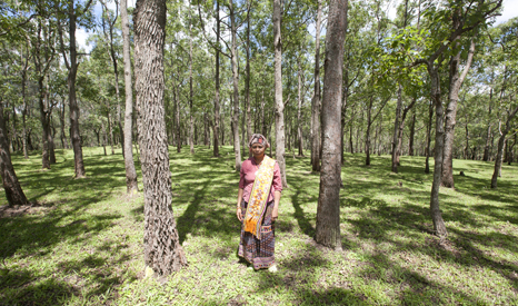 Mama Aleta in the forest of West Timor (Pic: Goldman Environmental Prize)