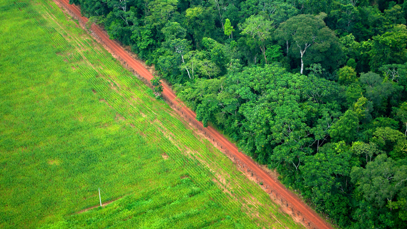 Forest cleared for agriculture in Acre, Brazil (Pic: CIFOR/Kate Evans)