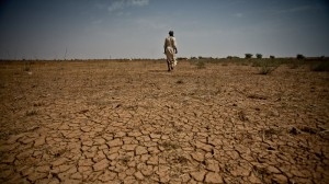 Sahel faces food crisis as population surges towards one billion