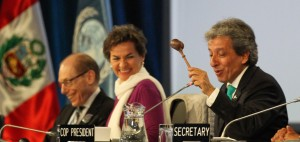 Lima Call for Climate Action - what was decided?