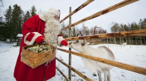 Fast Finland warming means blue Christmas for Santa