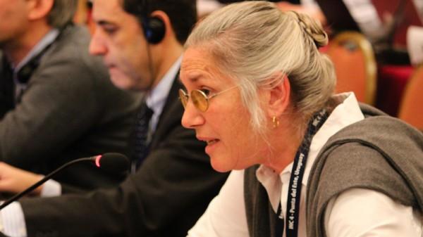 Susan Biniaz is the top US climate change lawyer (Pic: IISD)