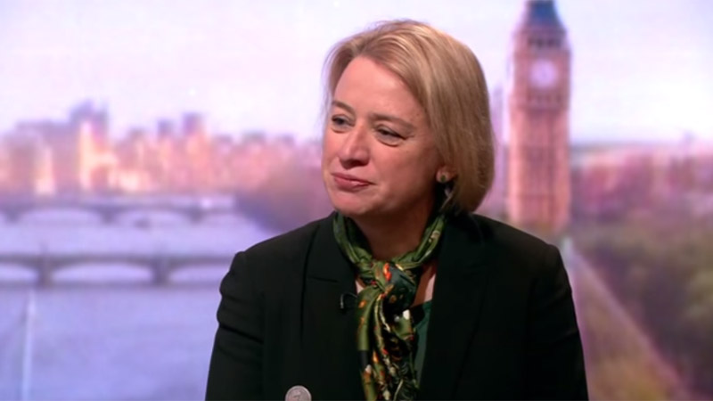 UK Green Party leader Natalie Bennett (Pic: BBC screenshot)
