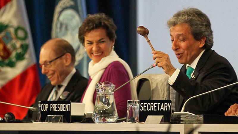 COP 20/CMP 10 President Manuel Pulgar-Vidal, Peru, closes the 2014 UN summit (Pic: IISD)