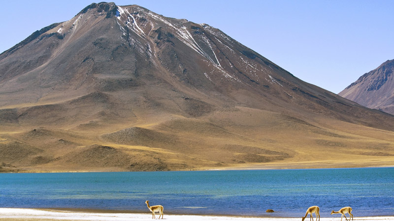 Miscanti Lake in northern Chile (Pic: Flickr/DimitryB)