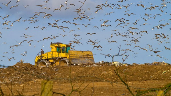 Carbon credits could fund landfill sites to capture methane for power (Pic: Flickr/James)
