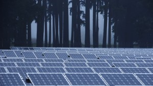 Solar industry strong despite Sun Edison bankruptcy, say analysts
