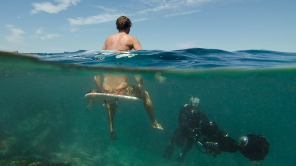 A photographer carries out a coral survey at North Bondi Beach (Pic: Catlin Seaview Survey)