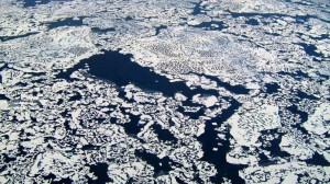 Pleas to protect Arctic as polar summit begins