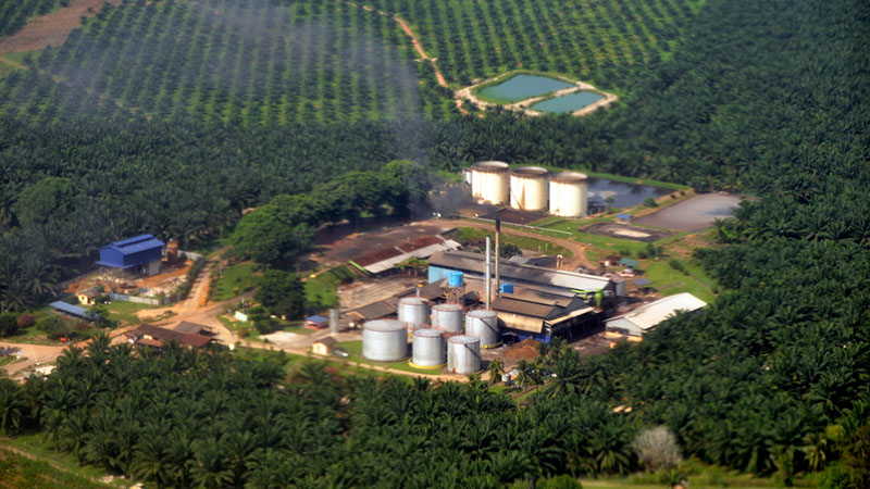 A palm oil mill near Sepang KLIA (Pic: Marufish/Flickr)