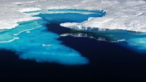"Arctic sea ice melt ""like a train wreck"" says US scientist"
