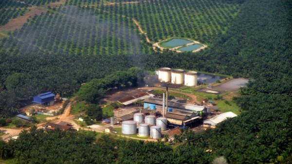 A palm oil mill in Malaysia (Flickr/Marufish)