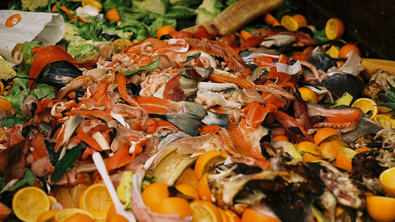 Food scraps in a dumpster (Wikimedia commons)