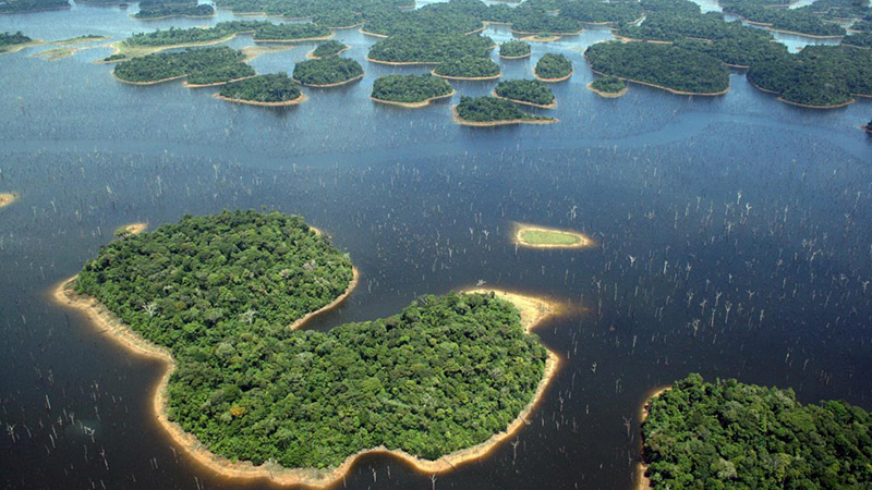 The Balbina lake in Brazil's Amazon which created over 3,500 islands from the forest floor (Credit: Eduardo Venticinque)