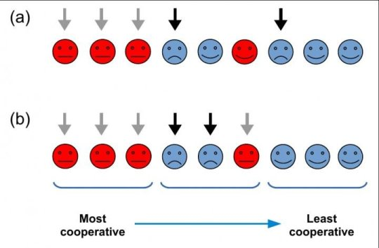 A diagram of two possible strategies of targeted punishment studied in the paper (Credit: Royal Society Open Science)
