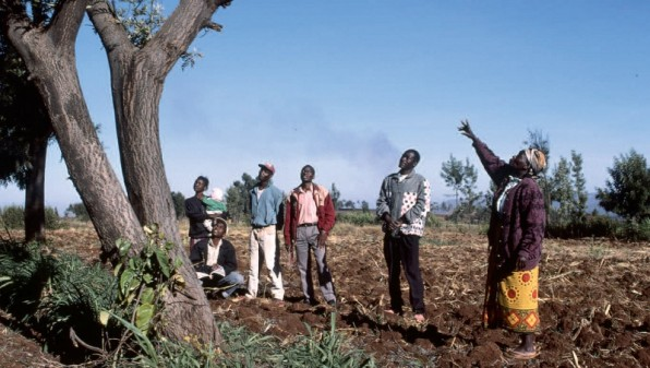 A women explains the benefit of having trees in the field, Kenya (Flickr/Program on Forests)