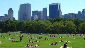 Greener cities deal better with urban heat