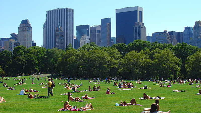 New  York's Central Park sizzles on a summer's day (Flickr/ ZeroOne)