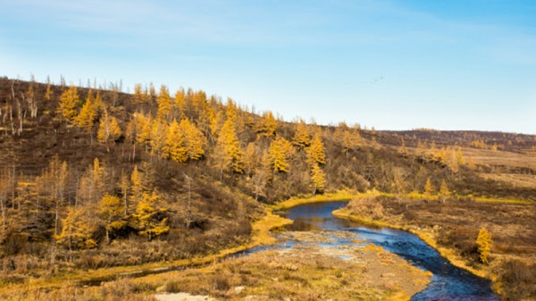 Permafrost diaries: Heading deeper into Siberia