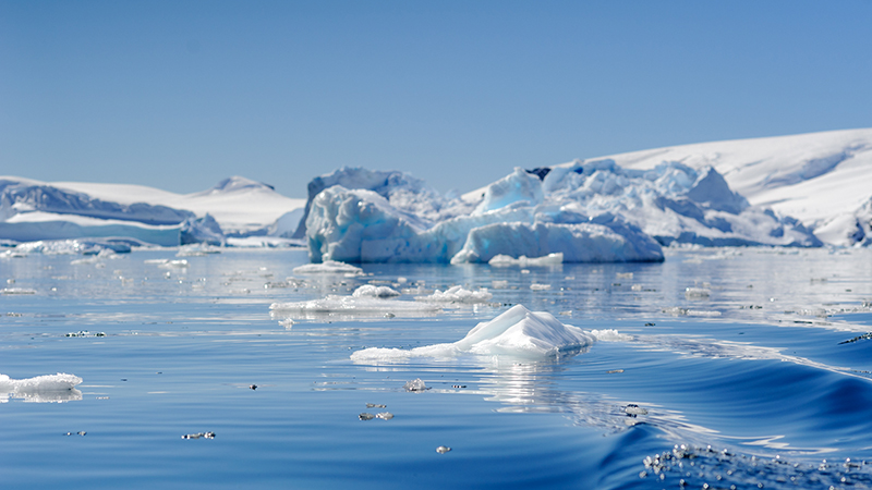 The Southern Ocean encompasses the icy continent of Antarctica (Flickr/ Reeve Jolliffe)